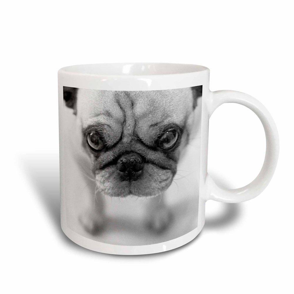3dRose Pug Magic Transforming Mug, 11-Ounce