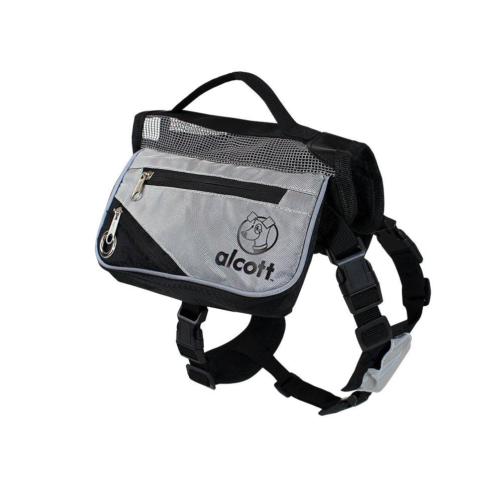 Alcott Explorer Adventure Backpack