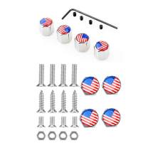 Dsycar Chrome Metal Skull Logo Anti-Theft Car License Plate Bolts Frame Screws- Gift 4 Free Skull Logo Tire Valve Stem Caps (US Flag)