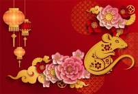 AOFOTO 7x5ft 2020 Year of The Mouse Spring Festival Backdrop Happy New Year Eve Flowers Red Lantern Chinese Paper-cuts Rat Background Festive Holiday Party Celebration Photo Studio Props Vinyl