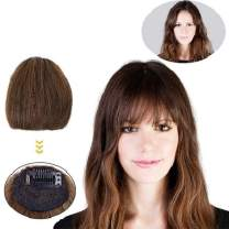 AISI BEAUTY Clip in Bangs Fringe Real Human Hair Bang Clip in Hair Extensions Clip on Bangs No Temples