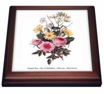 """3dRose Vintage Flowers Pompon Rose Star of Bethlehem Primrose Wood Sorrel Trivet with Ceramic Tile, 8 by 8"""", Brown"""