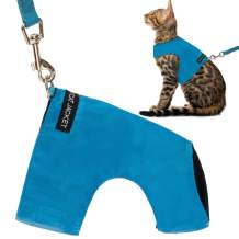 Escape Proof Cat Harness with Leash Set - Adjustable Fleece Walking Jacket - Soft and Light Weight for Kittens, Puppies