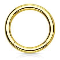 BodyJ4You Piercing Ring Hinged Clicker Segment Hoop 4G-20G Surgical Steel Nose Septum Lip Tragus