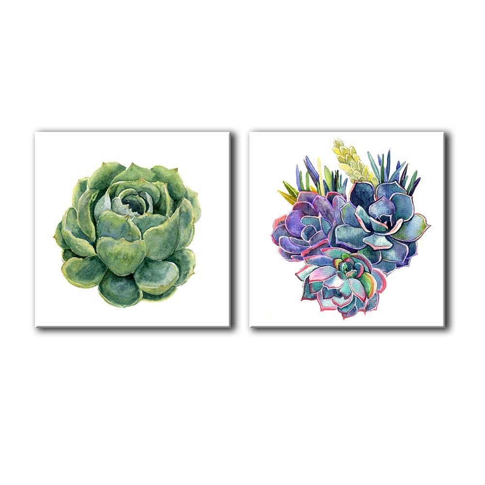 """wall26 - 2 Panel Square Canvas Wall Art - Watercolor Style Succulent Plant with White Background - Giclee Print Gallery Wrap Modern Home Decor Ready to Hang - 24""""x24"""" x 2 Panels"""