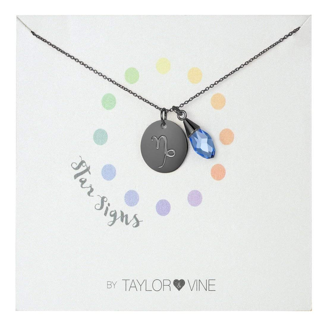 """Star Signs Capricorn Necklace Pendant with CZ Gem Birth Stone, 16"""" by Taylor and Vine"""