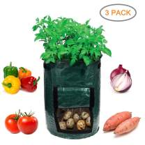Garden4Ever Potato Planter Bags 3-Pack 10 Gallon Grow Bags Aeration Tomato Plant Pots Container with Flap and Handles