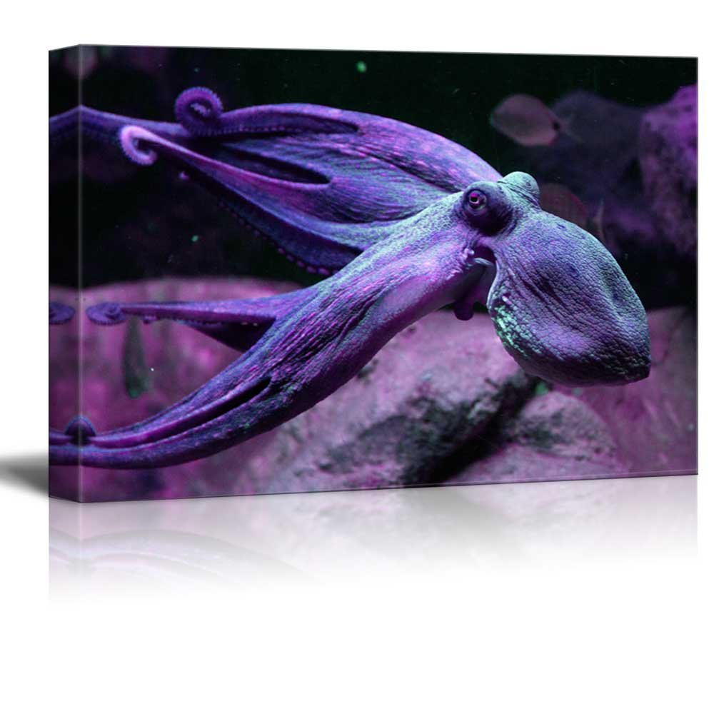wall26 - Canvas Wall Art - A Purple Octopus Swimming Under The Ocean - Gallery Wrap Modern Home Decor   Ready to Hang - 24x36 inches