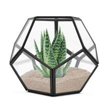 Banord Black Tabletop Geometric Terrarium, 7.8 x 7.8 x 6.5 inches Metal with Glass Succulents Terrarium Container, Air Planter Jewelry Wedding Decor Flower Cardbox Candle Holder