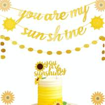 JeVenis Set of 3 You Are My Sunshine Banner Sun Banner You Are My Sunshine Birthday Decoration for Baby Shower Kid's Birthday Party Decorations