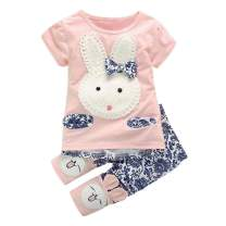 Adorable Rabbit Outfits Toddler Baby Girls Clothes Set Cute Bunny Bow Applique T-Shirt+ Pants 2pcs Outfits