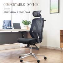 Allguest Ergonomic Adjustable Office Chair with Adjustable Lumbar Support-High Back with Mesh Seat Cushion-Adjustable Head-Arm Rests,Seat Height-Reclines (Fabric)