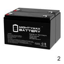 Mighty Max Battery ML12-6 .250TT - 6 Volt 12 AH SLA Battery (2 Pack)