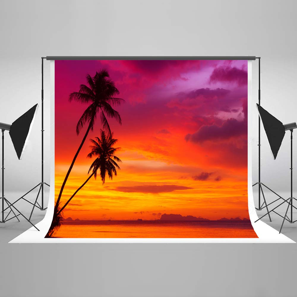 Kate 8×8ft Summer Twlight Beach Backdrops for Photography Coconut Dusk Gloaming Sea Background Palm Tree Photo Studio Booth Cotton Cloths Seamless
