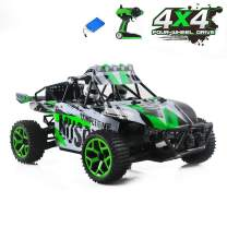 FPVERA Remote Control Car Electric RC Cars for Kids Adults Gifts, High Speed 1/18 Scale Rc Trucks 4WD Off Road Racing Vehicle, 2.4Ghz Radio Remote Control Car (1:18 Scale Car-Green)