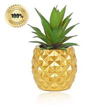 LASPERAL Potted Artificial Succulent Decoration, Fake Pineapple Plant for Home Office Tabletop Decoration (Golden Color)