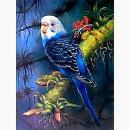 5D Diamond Painting Kit for Adult Kids 30x40cm/12x16Inch Full Round Kits Christmas Day Gift by TOCARE- Parrot