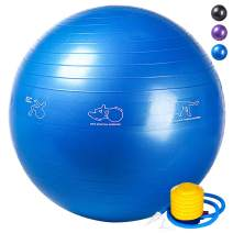 RACINESS Exercise Ball Birthing Ball 65 cm,Stability Balance Yoga Ball for Birthing & Physical Therapy,with Quick Pump (Office & Home & Gym)
