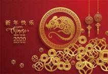 AOFOTO 9x6ft Happy New Year Backdrop 2020 Year of The Rat Traditional Chinese Red Style Spring Festival Poster Banner Cute Paper Cut Mouse Gold Coins Background for Photography Photos Prop Vinyl