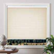 Grandekor Cordless Light Filtering Honeycomb Cellular Blinds and Shades for Window, Pale Beige, 31 inch x 64 inch