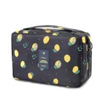 iZiv Travel Bag Cosmetic Bag Waterproof Personal Organizer Bag Hanging Sponge Bag Portable Wash Bag For Women, Men, Vacation, Business Trip, Bathroom