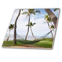 3dRose Hammock Under Hawaiian Palm Trees, Maui, Hawaii - Us10 Jgs0038 - Jim Goldstein - Ceramic Tile, 12-Inch (ct_89189_4)