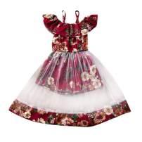 Toddler Baby Girl Summer Dress Boho One-Piece Floral Vest Princess Ruffle Vintage Mesh Dress Kids Clothes