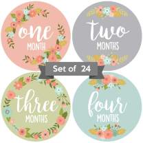 Adorable 4 in Floral Baby Monthly Milestone Stickers. Set of 24 Infant Girl Decals. Pink, Blue, Green and Gray Picture Props for Babies. Cute First Year Family Scrapbook and Newborn Album Photo Aids
