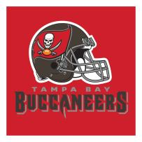 Creative Converting Officially Licensed NFL Paper Lunch Napkins, 192-Count, Tampa Bay Buccaneers
