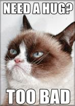 "Ata-Boy Grumpy Cat 'Need a Hug? Too Bad' 2.5"" x 3.5"" Magnet for Refrigerators and Lockers"