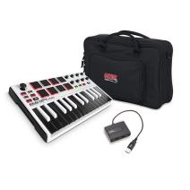 Akai Professional USB MIDI Drum Pad & Keyboard Controller with Joystick, and Gig Bag for Micro Keyboards and Controllers, AmazonBasics 4-Port USB