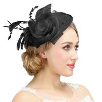 Valdler Halloween Black Costume Feather Net and Veil Fascinator Hair Clip Hat Hair Accessories Clip for Festival Party