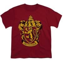 Popfunk Harry Potter Gryffindor Logo Hogwarts Kids Youth T Shirt & Stickers