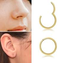 Ldurian 316L Surgical Stainless Steel Hypoallergenic Hinged Nose Ring Nose Hoop 14/16/18/20 Gauge, Diameter 5-10mm with Silver/Gold/Rose Gold/Black Nose Piercing Jewelry Hoop Earrings for Women/Men