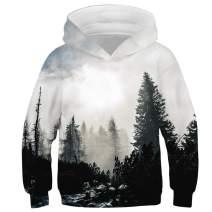 Always beautiful Boys' Novelty Hoodie 3D Print Realistic Animal Universe Abstract Hooded Sweatshirt Pullover