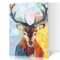 LIUDAO DIY Oil Painting on Canvas Paint by Number Kit for Kids 16x20 inch - Christmas Deer Doe (Framed)