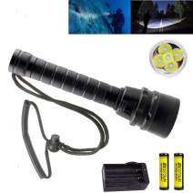 BESTSUN High Lumens Diving Flashlight, 5x CREE XM-L2 LED Dive Light Super Bright Scuba Safety Torch Lamp Outdoor Land & Under Water Sports with Battery Charger Wrist Strap