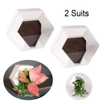 Wall Planters for Indoor Plants - 2 Pack White DIY Vertical Wall Planters Flower Pots - Hexagon Lightweight Hanging Planters Plants Decorative