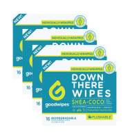 Goodwipes Down There Feminine Flushable Wet Wipes for Women, Shea-Coco Scent, 16 Individually Wrapped Wipes (4 Pack)