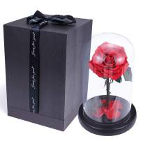 sexyrobot Beauty And The Beast Red Rose, Handmade Real Rose Preserved Fresh Flower with Fallen Petals in a Glass, with Exquisite Gift Box for Mother's Day Christmas Thanksgiving Decoration