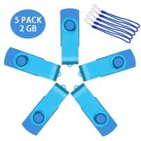 Uflate 5 Pack USB 2.0 Flash Drive 1 GB Bulk Sky Blue 1GB Thumb Drives Metal Zip Drive Jump Drive Multipack Memory Sticks with Led Indicator