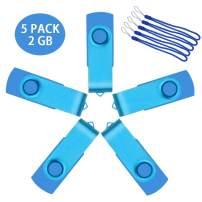 Uflate 5 Pack USB 2.0 Flash Drive 1 GB Bulk Sky Blue 1GB Thumb Drives Metal Zip Drive Jump Drive Multipack Memory Sticks with Led Indicator