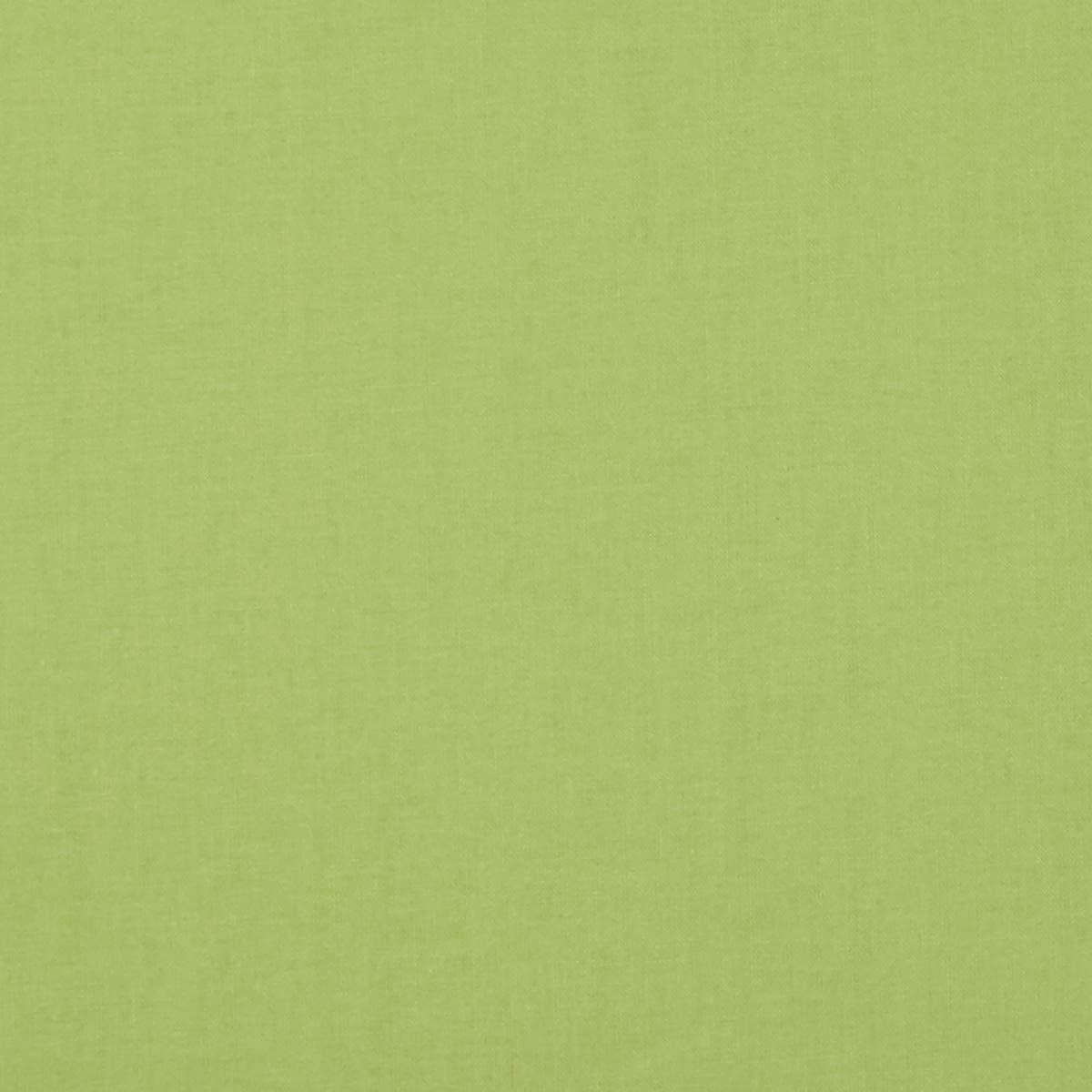 Riley Blake Designs 44'' Wide Confetti Cotton SolidSpring Green Fabric by the Yard