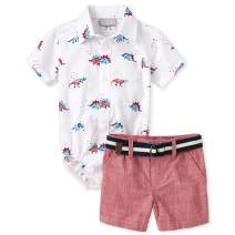The Children's Place Baby Boys Sleeve Poplin Short Set