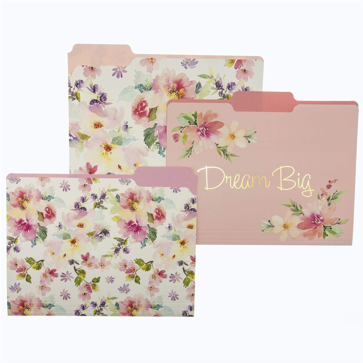 "Graphique Watercolor Floral File Folder Set – File Set Includes 9 Folders and 3 Unique Floral Designs, Embellished w/ Gold Foil  on Durable Triple-Scored Coated Cardstock, 11.75"" x 9.5"""