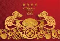 AOFOTO 6x4ft Happy Chinese New Year Backdrop 2020 Year of The Rat Traditional Red Spring Festival Poster Banner Paper Cut Mouse Gold Ingot Coin Background for Photography Photo Studio Props Vinyl