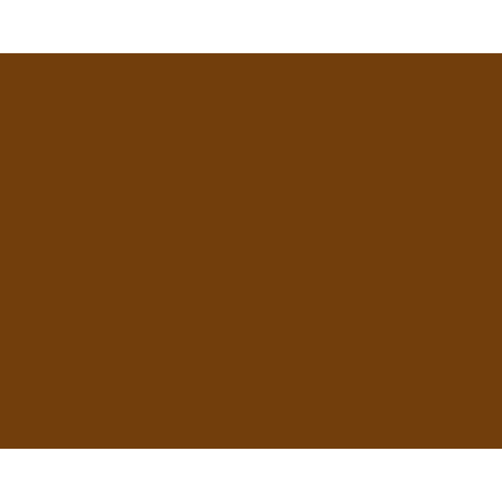 """BAZIC 22"""" X 28"""" Brown Poster Board, Colored Paper Drawing Painting Scrapbooking Graphic Display Carton, Art Craft Projects School Home DIY Decor (Case of 25)"""