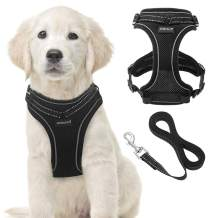 Reflective Dog Harness and Leash Set for Puppies and Kittens, Soft Mesh Puppy Harness with Leash, Safe Adjustable Pet Vest for Outdoor Training Walking