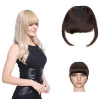 SEGO 100% Real Human Hair Clip in Bang Fringe Hair Extensions Front Hair Fringe with Nice Net Natural Flat Neat Bangs with Temples For Women Hand Tied Straight #2 Dark Brown 25g 2 Clips