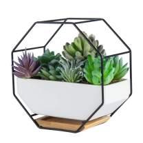 ORZ Wall Succulent Planter Geometric Ceramic Succulent Pots with Drainage for Cactus Small Vaux Plant Indoor Decor (Black)